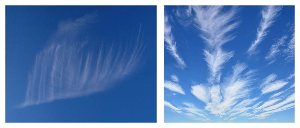 Nubes con forma de plumas llevadas por el viento